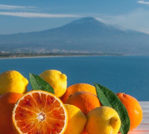 Citrus fruits with Etna_ad937890-3749-49b4-841c-656cd7f77466-min